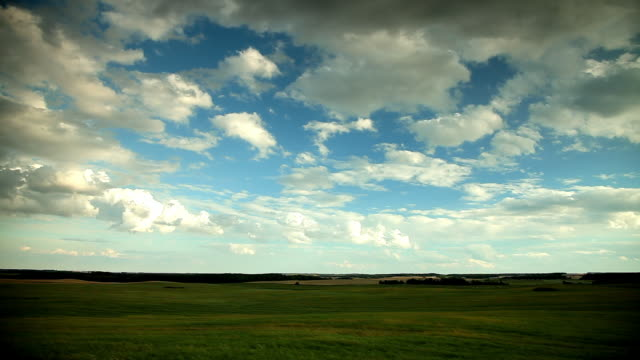 a view of field that stretch to the horizon - manitoba stock videos & royalty-free footage