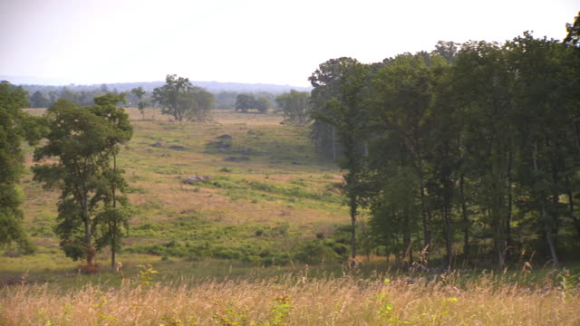 ws pan view of field with grass stalks at gettysburg national military park / gettysburg, virginia, united states - gettysburg stock videos & royalty-free footage