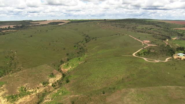 vídeos de stock, filmes e b-roll de cu aerial view of field with small hills / brazil - estrada rural