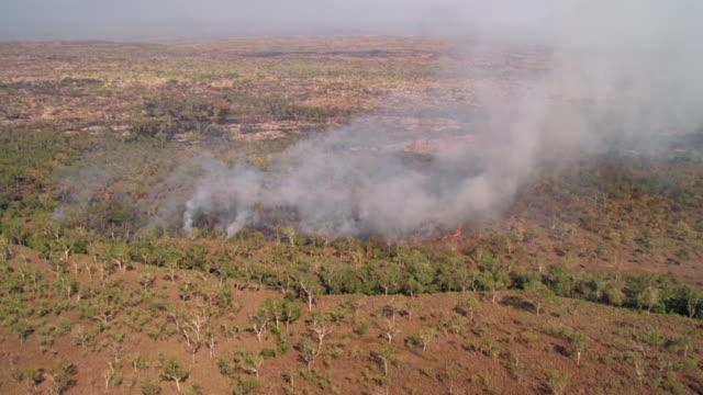 vídeos de stock e filmes b-roll de aerial ws view of  fire in forest / mitchell plateau, western australia, australia - fenómeno natural