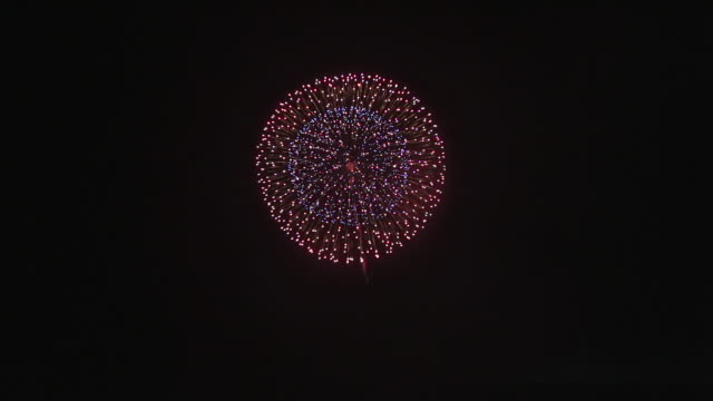 ws view of fireworks blooming in omagari's sky / daisen, akita, japan - firework display stock videos & royalty-free footage