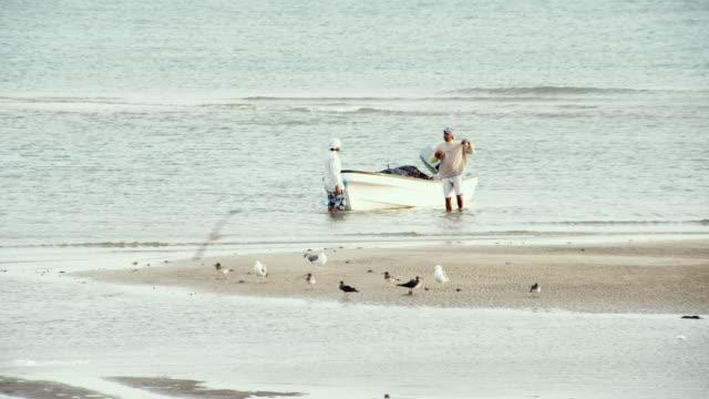 vídeos de stock, filmes e b-roll de ws view of fishermen with boat in water / sur, oman - organismo aquático