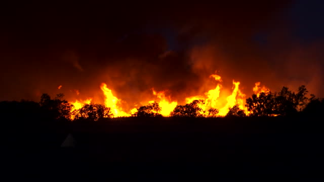 ws view of flames and smoke with tree line sillouetted / queensland, australia - wide shot stock videos & royalty-free footage