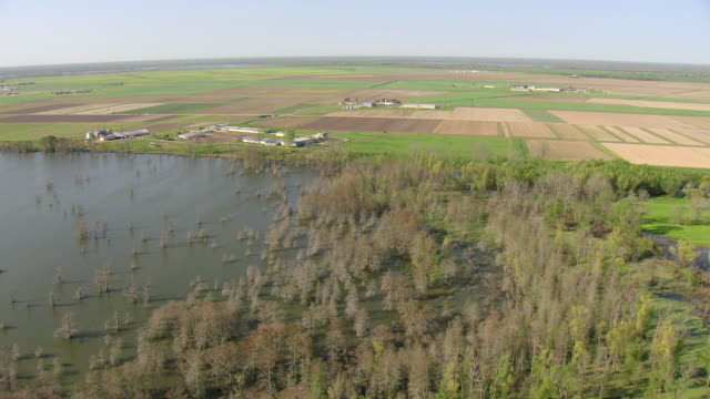 WS AERIAL View of flooded swamp and farm fields / Louisiana, United States