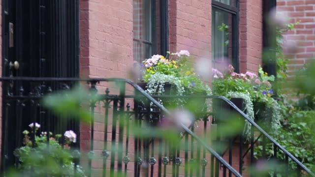 ECU R/F View of flowers and front door and flowers in background / New York, United States