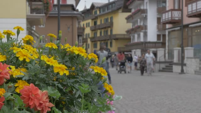 view of flowers and people on main street in cortina d'ampezzo, belluno, dolomites, italy, europe - cortina stock videos & royalty-free footage