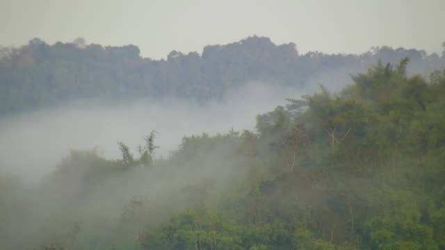 ws view of fog rolls in on hills of daen lao range near city at sunrise / mae sai, chiang rai, thailand - echtzeit stock-videos und b-roll-filmmaterial