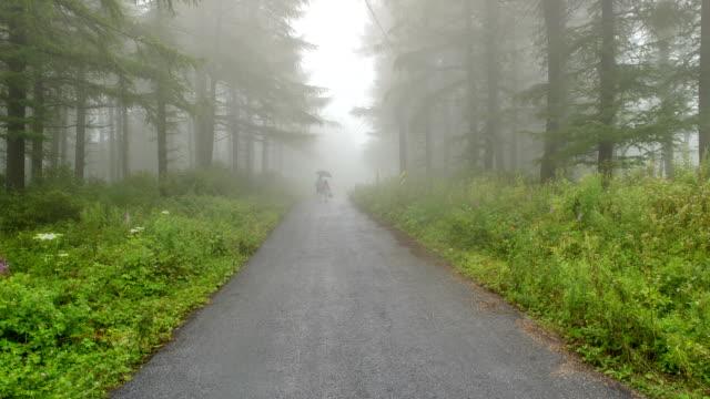view of foggy trail road in manhangjae hill at hambaeksan - hill点の映像素材/bロール