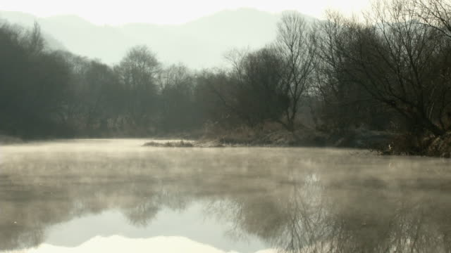 view of foggy wetland in south korea - marsh stock videos & royalty-free footage