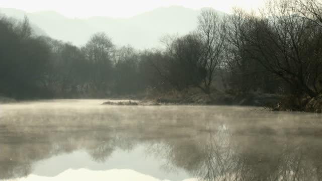 stockvideo's en b-roll-footage met view of foggy wetland in south korea - moeras