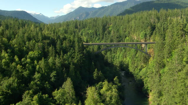 vídeos y material grabado en eventos de stock de ws aerial view of forest and bridge over elwha river / washington, united states - olympic national park
