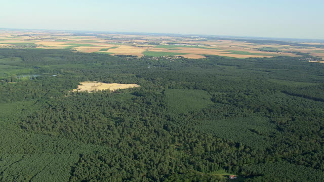 WS AERIAL View of forest area with farm land / Picardy, France