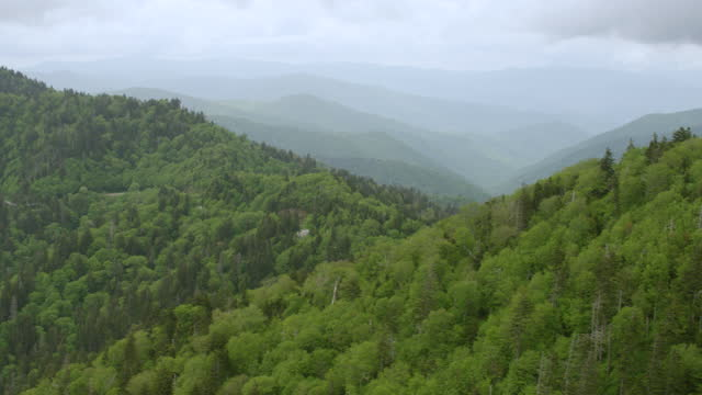 ws aerial pov view of forest area with smoky mountains in background / cherokee, north carolina, united states - appalachian mountains stock videos & royalty-free footage