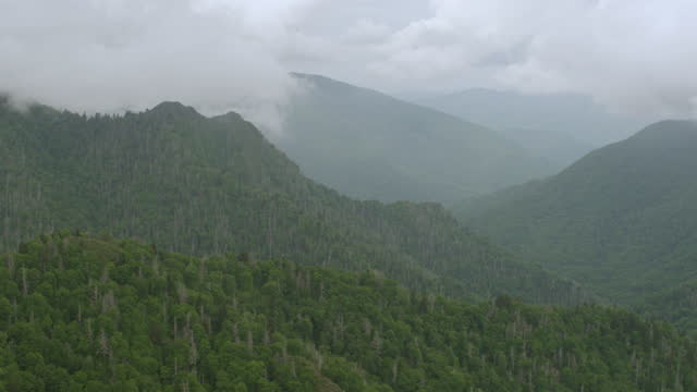 WS AERIAL POV View of forest area with Smoky Mountains in background / Sevier County, Tennessee, United States