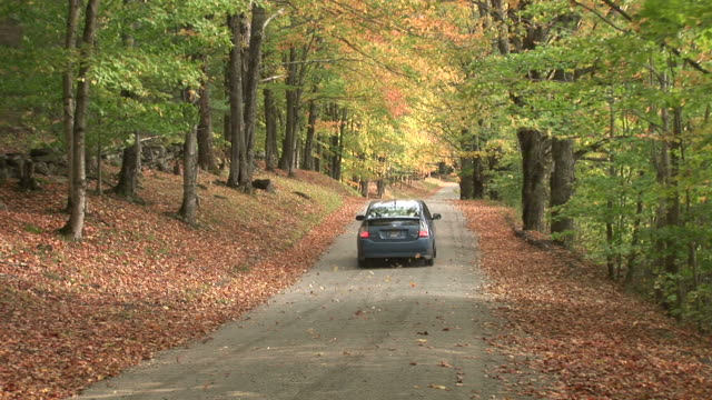 stockvideo's en b-roll-footage met view of forest road in vermont united states - hybride voertuig