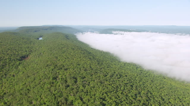 vídeos y material grabado en eventos de stock de ws aerial view of forest to fog bank en route from lake hopatcong to delaware gap / new jersey, united states - delaware water gap
