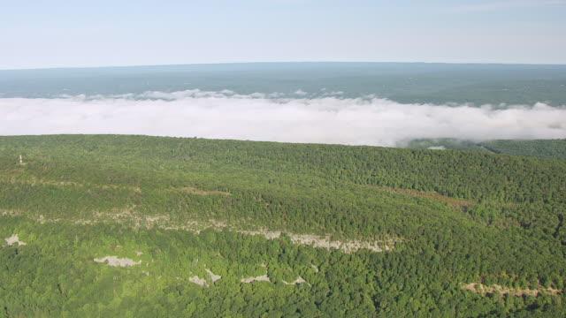 vídeos y material grabado en eventos de stock de ws aerial view of forest with fog bank en route from lake hopatcong to delaware gap / new jersey, united states - delaware water gap
