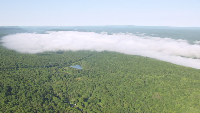 vídeos y material grabado en eventos de stock de ws aerial ds view of forest with fog bank en route from lake hopatcong to delaware gap / new jersey, united states - delaware water gap