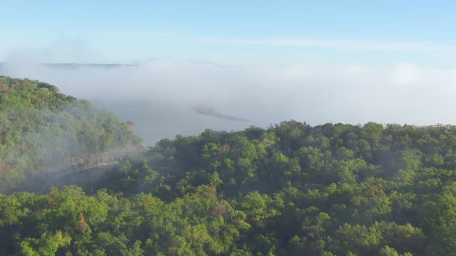 WS AERIAL TD View of forest with low hanging clouds and water in Prairie State Park in Barton County / Missouri, United States