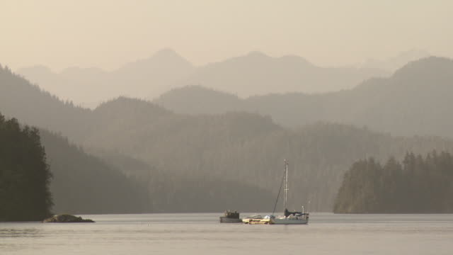 ws pan view of forested hills and yacht in clayoquot sound / tofino, british columbia, canada - distant stock videos & royalty-free footage
