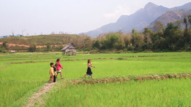 ms pan ts slo mo view of four children walking in single file along trail sometimes stopping to look around / hmong, luang prabang, laos - laos stock videos and b-roll footage