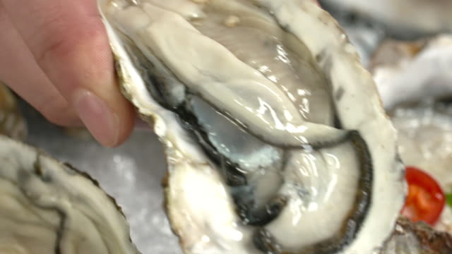 View of fresh oyster and shaking