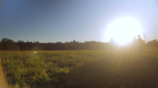 WS PAN View of friends standing in field at sunset / Langley, British Columbia, Canada