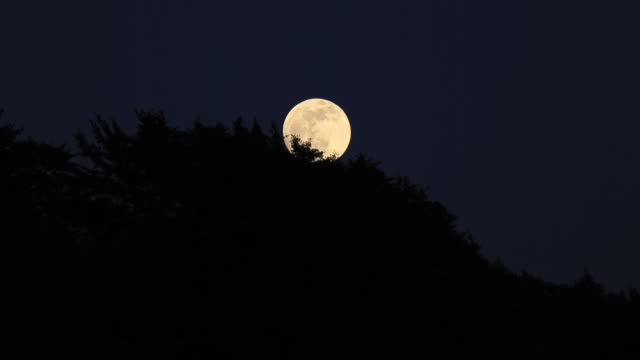ws t/l view of full moon coming out from mountain / izumo, shimane prefecture, japan  - full moon stock videos & royalty-free footage