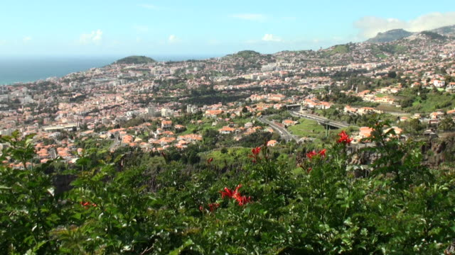 view of funchal, madeira island - madeira stock videos and b-roll footage