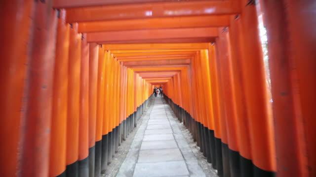 ms pov view of fushimi inari taisha / kyoto, japan  - kyoto stock videos and b-roll footage