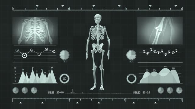vídeos de stock e filmes b-roll de view of futuristic interface with hud with holographic upper part of human body, human anatomy in futuristic medical interface. - ecrã tátil