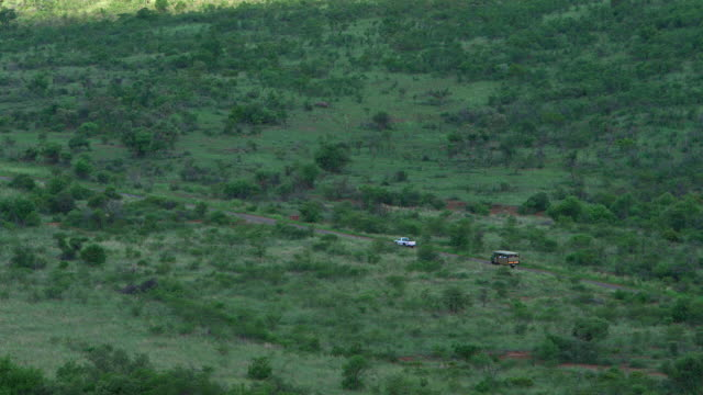WS TS View of game drive vehicle driving in  reserve / Pilanesberg, Gauteng, South Africa