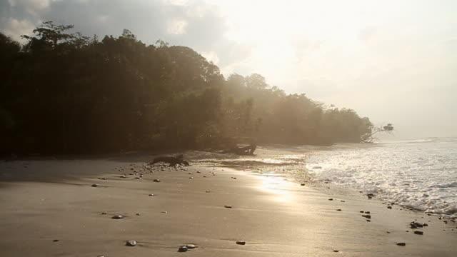 vídeos y material grabado en eventos de stock de ws slo mo view of gentle waves breaking on beach at dawn / krui, lampung, sumatra, indonesia - isla de sumatra