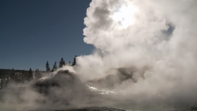 stockvideo's en b-roll-footage met ms view of geyser field / yellowstone national park, wyoming, united states - yellowstone national park