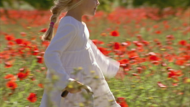 ms pan view of girl (6-7) carrying basket through field of wildflowers / fredericksburg, texas, usa  - side view stock videos & royalty-free footage