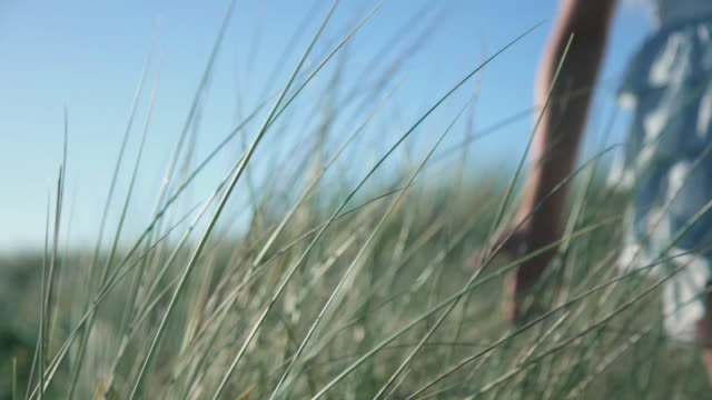 CU View of girl walking through long grass / Melbourne, Victoria, Australia