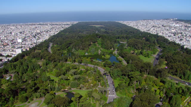 ws aerial view of golden gate park with japanese tea garden and stow lake / san francisco, california, united states - haight ashbury stock videos & royalty-free footage