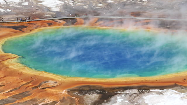 ws view of grand prismatic spring yellowstone national park / montana, united states - イエローストーン国立公園点の映像素材/bロール