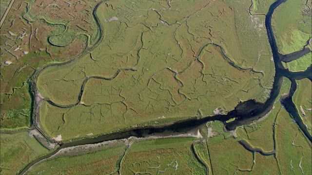 AERIAL WS ZI View of grass field and water/ Langeness, Schleswig-Holstein, Germany