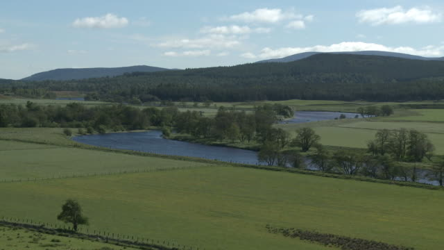 WS View of grassy field near river / Nethy Bridge, Speyside, Scotland