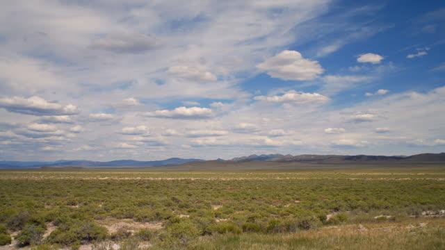 ws t/l view of grassy landscape / mesquite, nevada, usa - ネバダ州クラーク郡点の映像素材/bロール