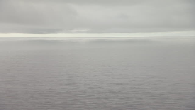 WS AERIAL View of gray water under cloudy sky / Alaska, United States