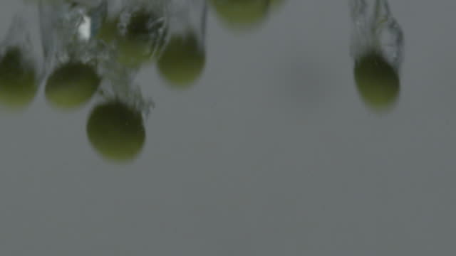 view of green beans falling into the water and making the water bubbles - グリーンビーンズ点の映像素材/bロール