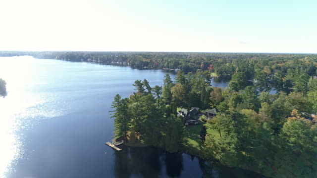stockvideo's en b-roll-footage met view of green color in algonquin park and flowing ottawa river in whitney, ontario, canada at daytime - ontario canada
