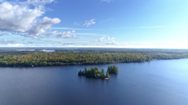view of green color in algonquin park and flowing ottawa river in whitney, ontario, canada at daytime - ontario canada stock videos & royalty-free footage