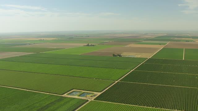 ws aerial pov view of green farmland in san joaquin valley / california, united states - 農園点の映像素材/bロール
