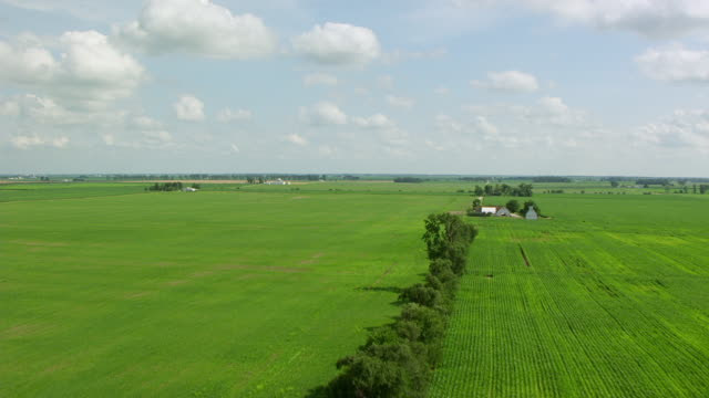 WS AERIAL POV View of green farmland / White County, Indiana, United States
