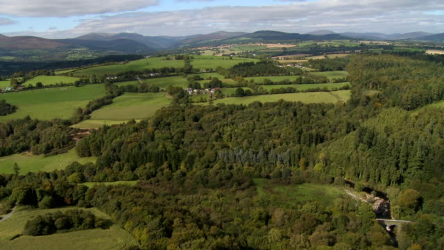 aerial ws pov view of green fields and trees / wicklow, leinster, ireland   - 50秒以上点の映像素材/bロール