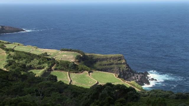 ws view of green fields next to ocean / ponta do raminho, terceira, portugal - アゾレス諸島点の映像素材/bロール