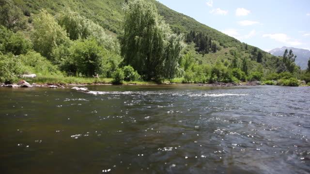 ws pov view of green hills near provo river / sundance, provo river, utah, usa - provo video stock e b–roll